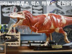 티라노사우루스 렉스 해부도 모형 완성 !